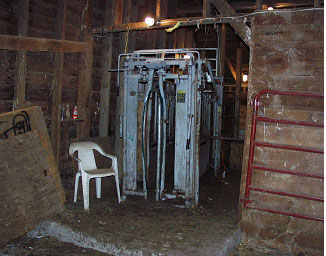 Photo #2.  Squeeze chute where heifer was being held.
