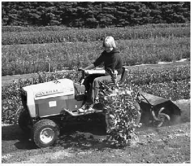 child working in a field on a small machine