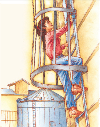 climbing a guarded ladder