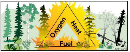 Graphic triangle: Heat, Oxygen, Fuel