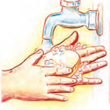 hands washing with soap