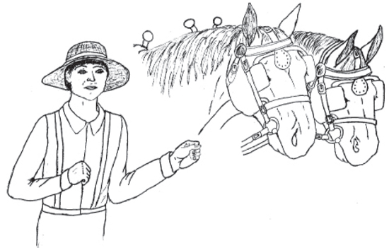 boy leading workhorses without reins or rope- children can draw in where they should be.