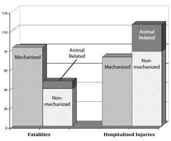 Bar graph showing fatalities vs Hospitalized injuries