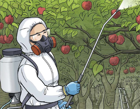 Colored drawing of appropriately dressed person spraying pesticides in an orchard