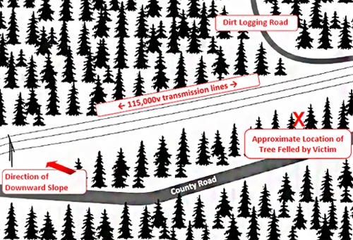 Figure 1 where diagram of incident site is described