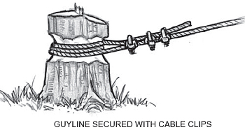 guyline secured with cable clips around a stump