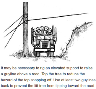 It may be necessary to rig an elevated support to raise a guyline above a road. Top the tree to reduce the hazard of the top snapping off. Use at least two guylines back to prevent the lift tree from tipping toward the road.