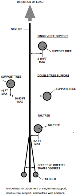 guidelines for placement of single-tree support, double tree support, and tailtree with anchors
