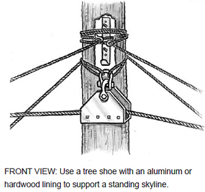 FRONT VIEW: Use a tree shoe with an aluminum or hardwood lining to support a standing skyline.