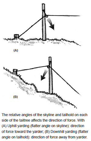 The relative angles of the skyline and tailhold on each side of the tailtree affects the direction of force. With