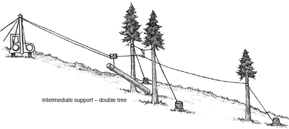 double tree support
