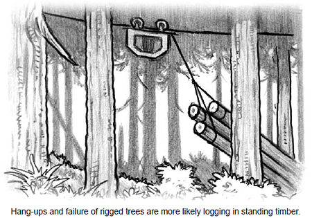 Hang-ups and failure of rigged trees are more likely logging in standing timber.