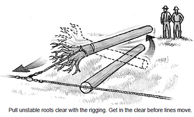 Pull unstable roots clear with the rigging. Get in the clear before lines move.