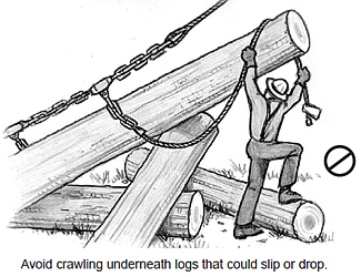 Avoid crawling underneah logs that could slip or drop
