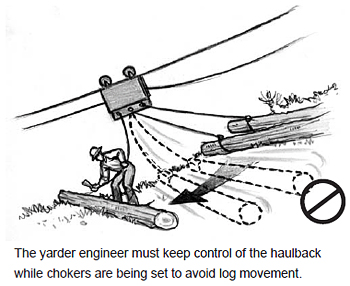 The yarder engineer must keep control of the haulback while chokers are being set to avoid log movement.