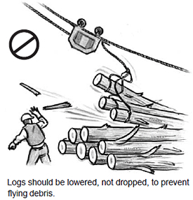 Logs should be lowered, not dropped, to prevent flying debris.