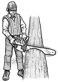 man with a chainsaw on a log