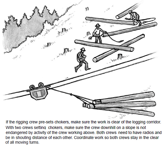 If the rigging crew pre-sets chokers, make sure the work is clear of the logging corridor. With two crews setting chokers, make sure the crew downhill on a slope is not endangered by activity of the crew working above. Both crews need to have radios and be in shouting distance of each other. Coordinate work so both crews stay in the clear of all moving turns.