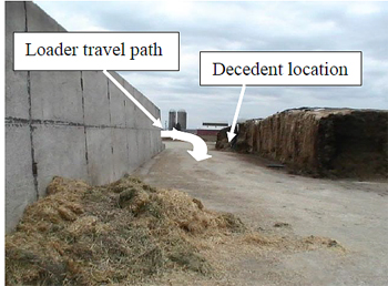 Figure 4. Incident area, standing on east end of bunker silo looking west.